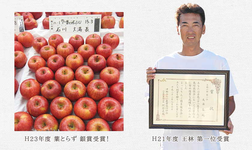 H21年度 王林 第一位受賞 H23年度 葉とらず 銀賞受賞!
