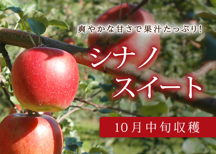 りんご いっ この 重 さ
