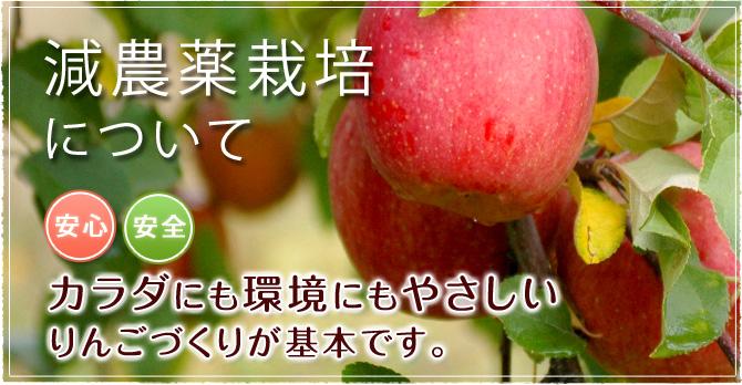 減農薬栽培について 「安心・安全」カラダにも環境にもやさしいりんごづくりが基本です。