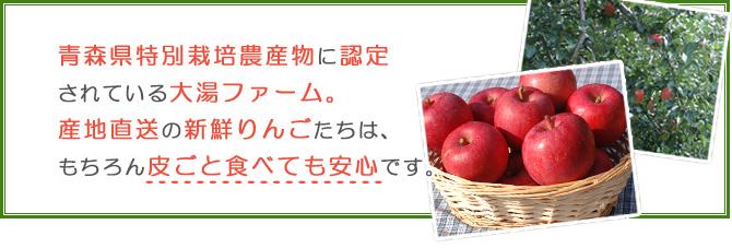 青森県と区別栽培農産物に認定されている大湯ファーム。産地直送の新鮮りんごたちは、もちろん皮ごと食べても安心です。