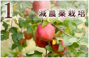 1 減農薬栽培