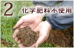 2 化学肥料不使用