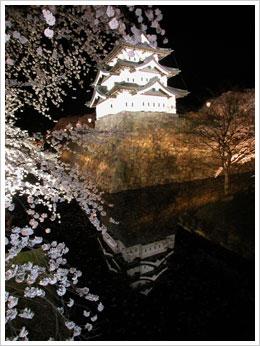ライトアップの弘前城と桜