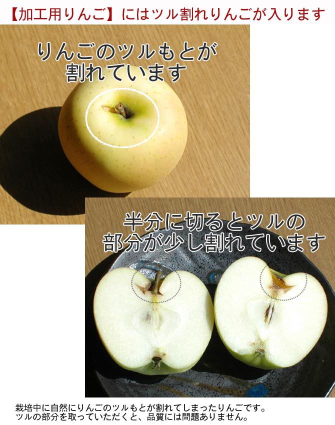 加工用にはツル割れりんごが入ります