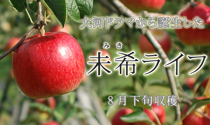 大河ドラマから誕生した【未希ライフ】8月下旬収穫