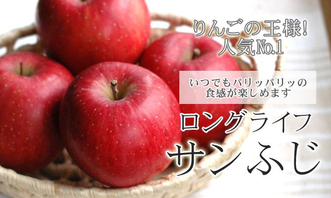 りんごの王様!ロングライフ【サンふじ】