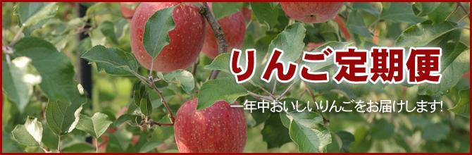 りんご定期便 一年中おいしいりんごをお届けします。