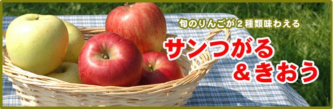 旬のりんごが2種類味わえる サンつがる&きおう