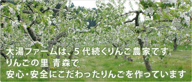 大湯ファームは、5代続くりんご農家です。りんごの里青森で安心・安全にこだわったりんごを作っています。