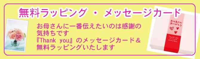 【母の日】メッセージカード