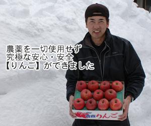 農薬を一切使用せず究極な安心・安全りんごができました