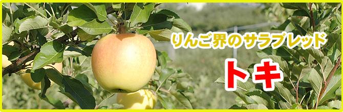 りんご界のサラブレッド トキ