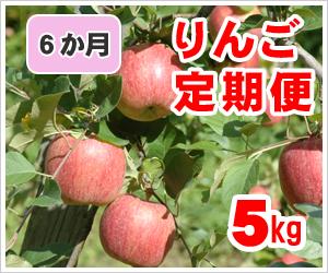 旬のりんご定期便5kg
