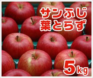 サンふじ葉とらず【5kg】