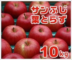 葉とらずサンふじ【10kg】