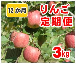 りんご定期便【12か月】