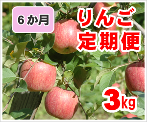 りんご定期便【3㎏】